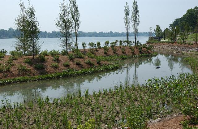 Downriver. Elizabeth Park revitalization (soft engineering project).