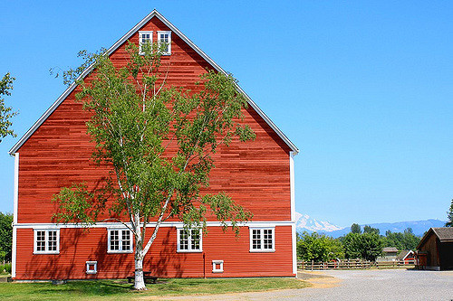 barn-edited